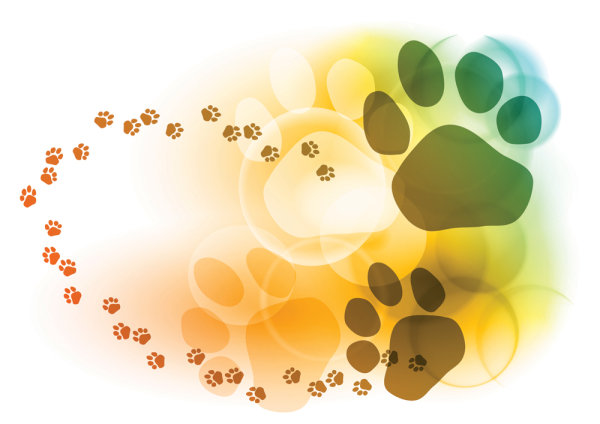 colorful bubbles footprints background   Vector