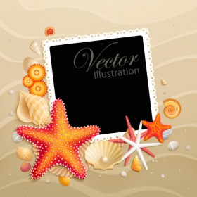 shells and starfish material 05   vector material