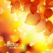 beautiful autumn background 01   vector material
