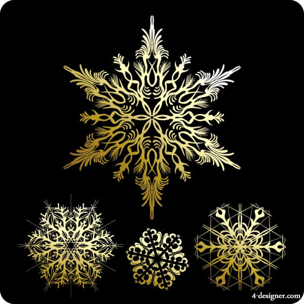 Beautiful snowflake pattern 01   vector material