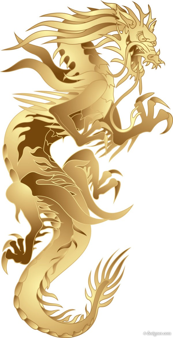 Year of the Dragon patterns 05   vector material