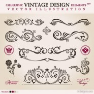 Exquisite patterns 04   vector material