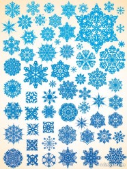 Variety of snowflakes vector material  1