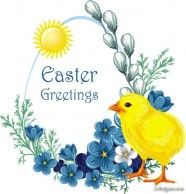 Easter chick Vector  3
