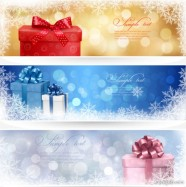 Beautifully exquisite Christmas gift banner02 Vector