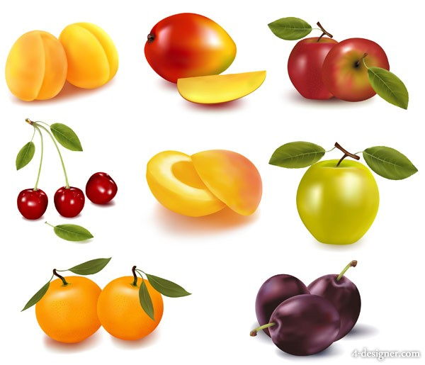 8 kinds of fruits vector material
