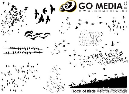 GoMedia produced vector material   birds silhouette