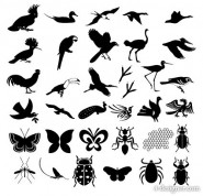 Hundreds of models of natural elements silhouette vector material