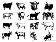 Black and white paintings cow vector image series two vector