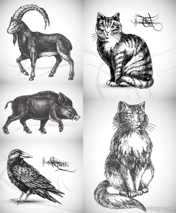 Five models of hand painted animals vector material