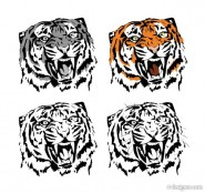Tiger picture 05   vector material