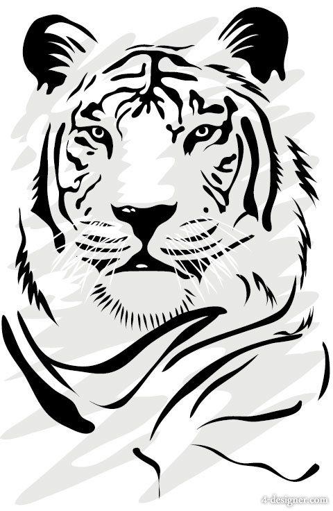 Tiger picture 06   vector material