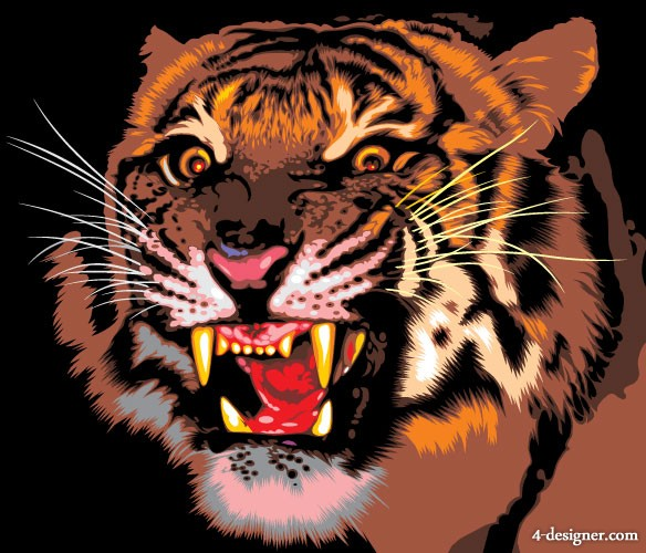 Tiger picture 09   vector material