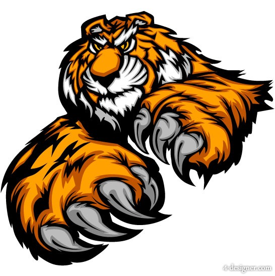 Tiger picture 19   vector material