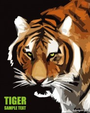 Tiger picture tiger stripes 23   Vector