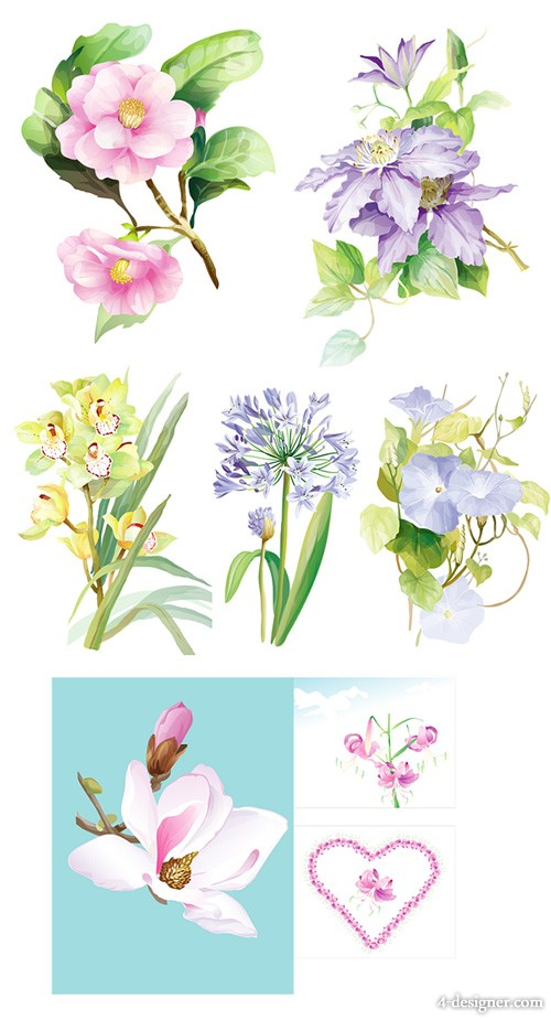 7 models elegant watercolor flowers Vector