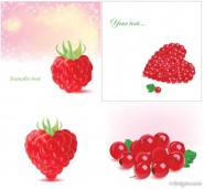 Romantic berries Vector