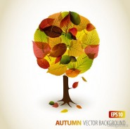 Autumn leaves graphic design vector material  2