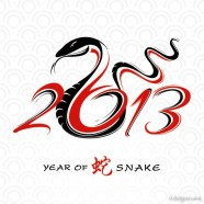 2013 Year of the Snake design 02   vector material