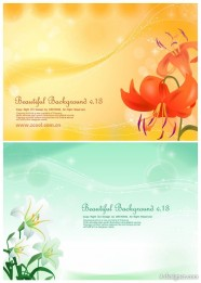 2 models of lilies and background vector material