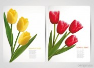 Exquisite flowers banner07 Vector
