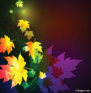 Gorgeous maple leaf background 01   vector material