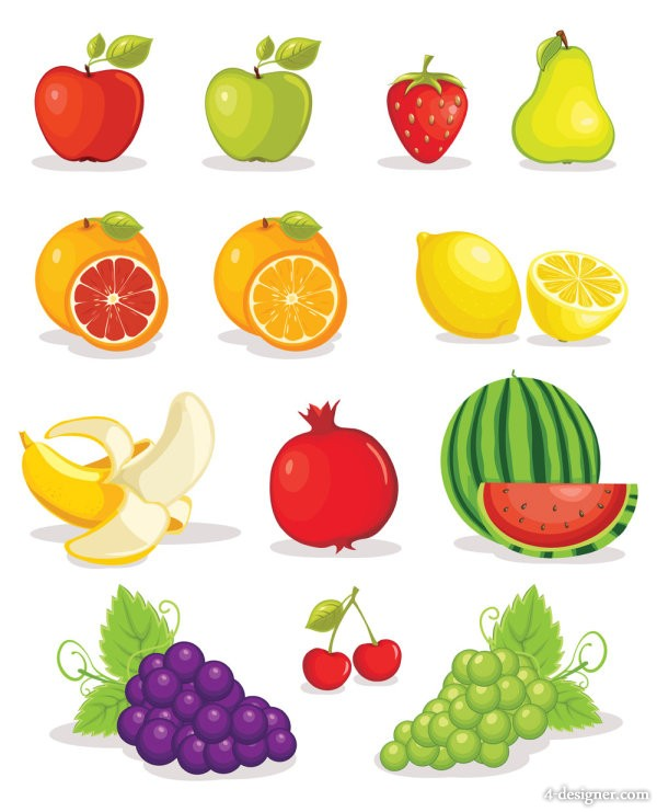 The fruit Photo 01   vector material