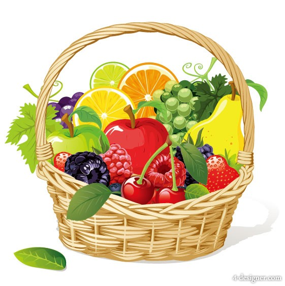The fruit Photo 02   vector material