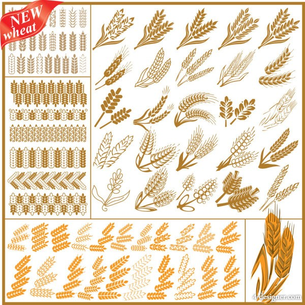 Vector wheat pattern 04 vector material