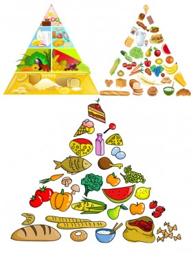Vector material of the food pyramid