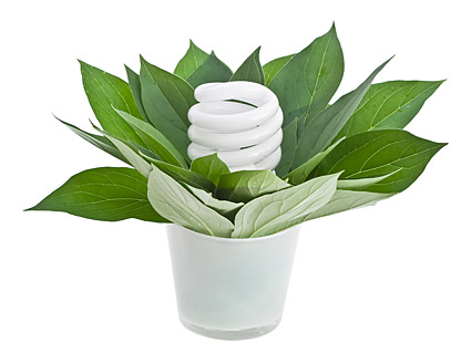 Images of green plants and energy saving lamps