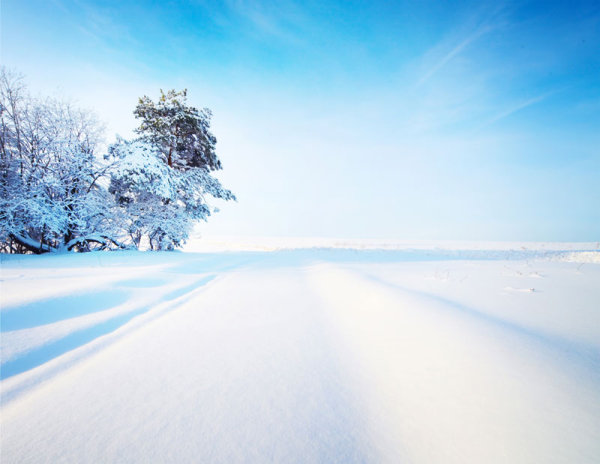 10_ HD picture winter snow snowflake HD picture