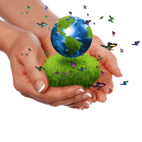 A commercial environmental theme picture 04   HD picture