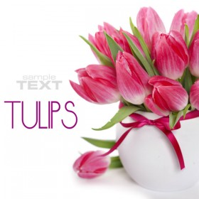 Beautiful flowers background 05   HD Pictures