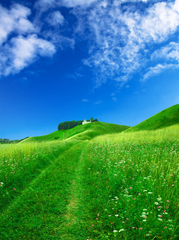 Beautiful grass, blue sky and white clouds high definition picture