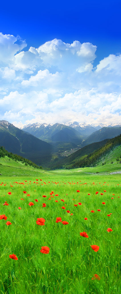 Beautiful outskirts of scenery Images