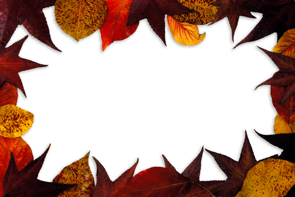 The five leaf material Borders 01   HD Pictures