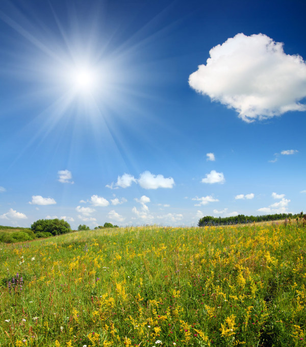 The sunny outskirts scenery HD pictures