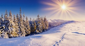 Winter Landscape HD picture material 8