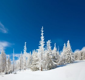 Winter landscape HD Images
