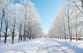 Winter landscape HD picture material 7
