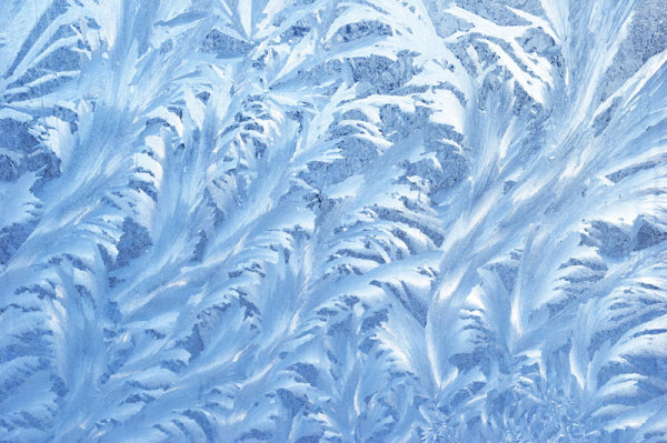 Winter snow snowflake HD picture of 8_ HD picture