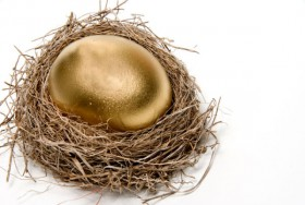 Golden egg nest 03   high definition picture
