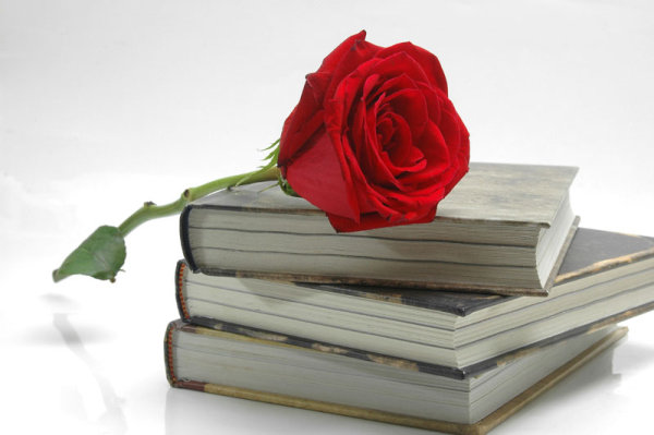 Old books with Rose 04   HD Pictures