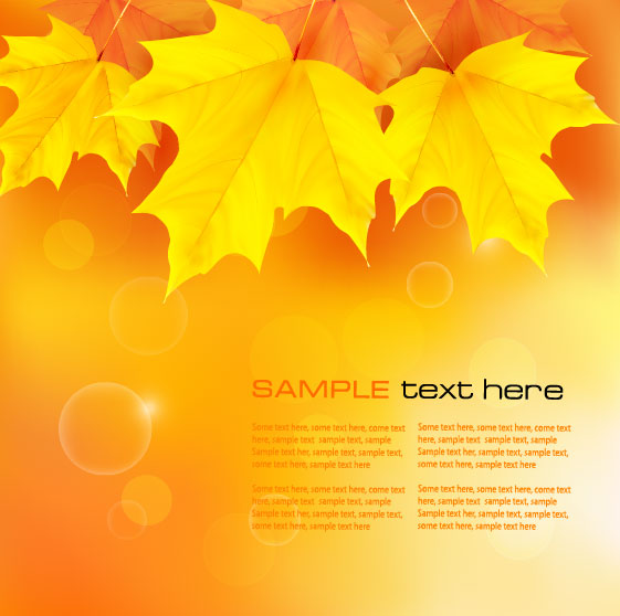 Beautiful woods in the background 02 vector material