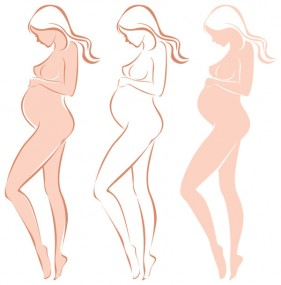 Expectant mothers silhouette 05 vector material