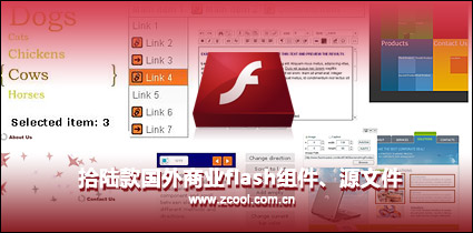 Revision of a section of foreign commercial flash components, source files