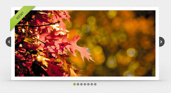 Show AutoPlay picture based on jQuery 1.0.9