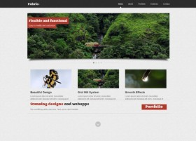 The a practical profile template Html5 Css3No.1