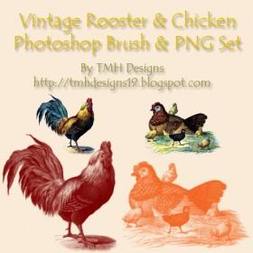 High Definition chicken PS brushes including PNG image files